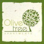 solidarit-olivtree-logo